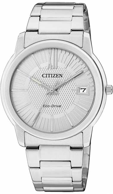 Citizen FE6010-50A Eco-Drive Solar