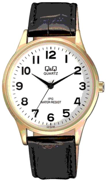Q&Q C214J104Y pánske hodinky